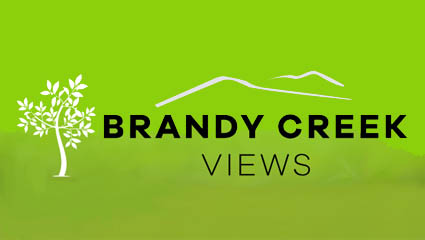 Need Land -  Brandy Creek Logo